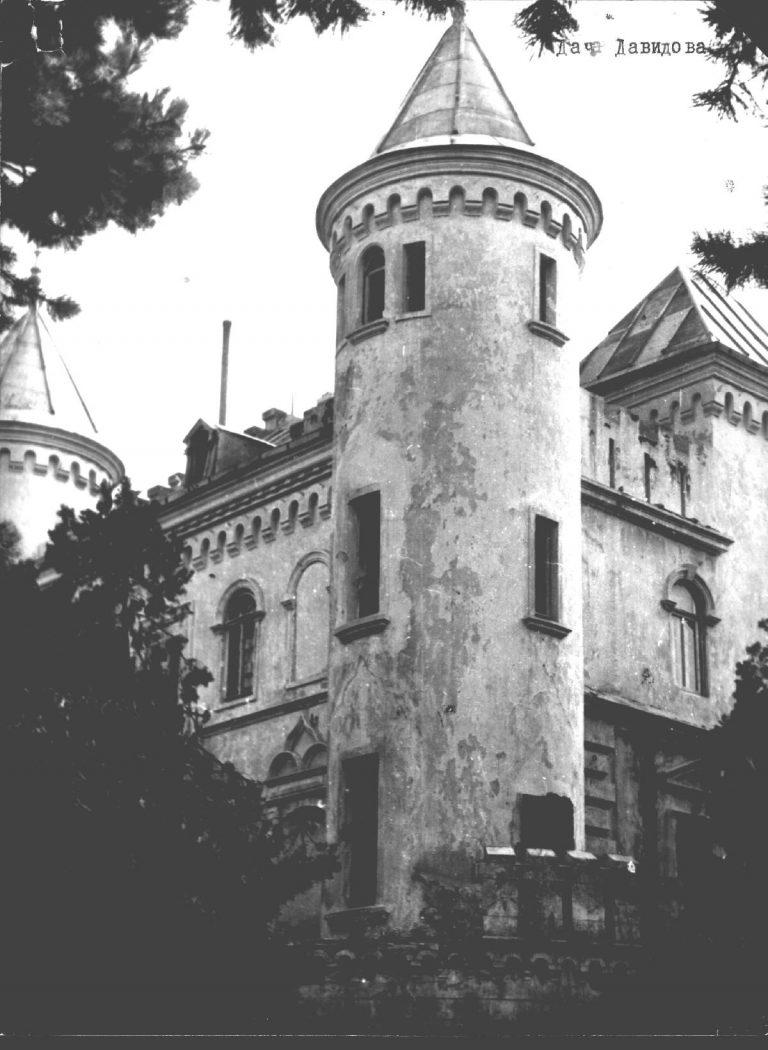 Count Davidoff castle in Topolyne village Villa Tinta